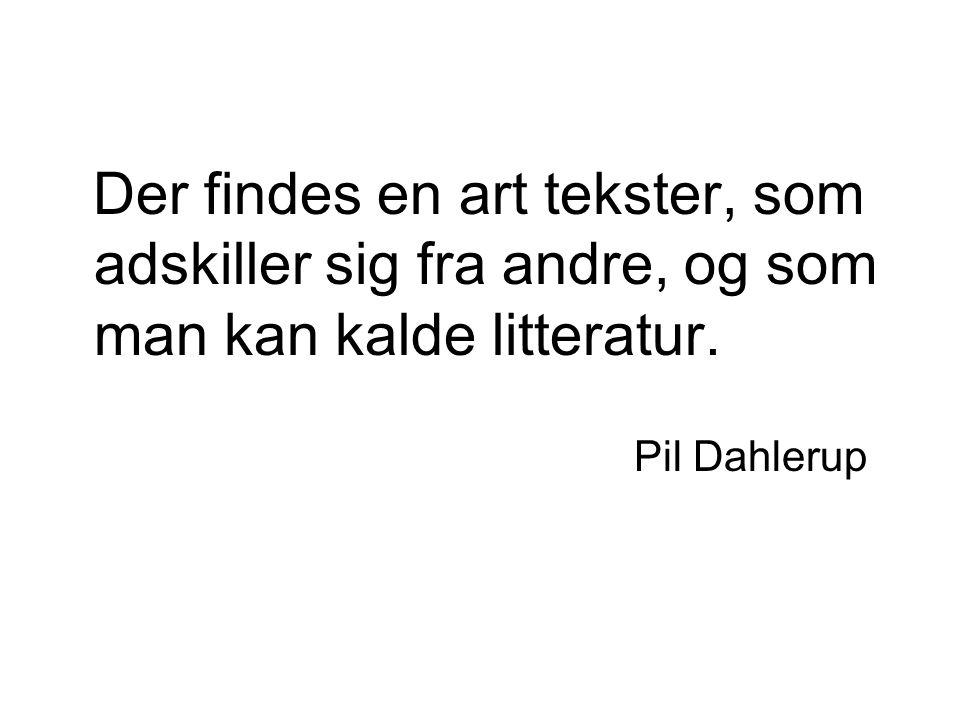 Der findes en art tekster, som adskiller sig fra andre, og som man kan kalde litteratur.
