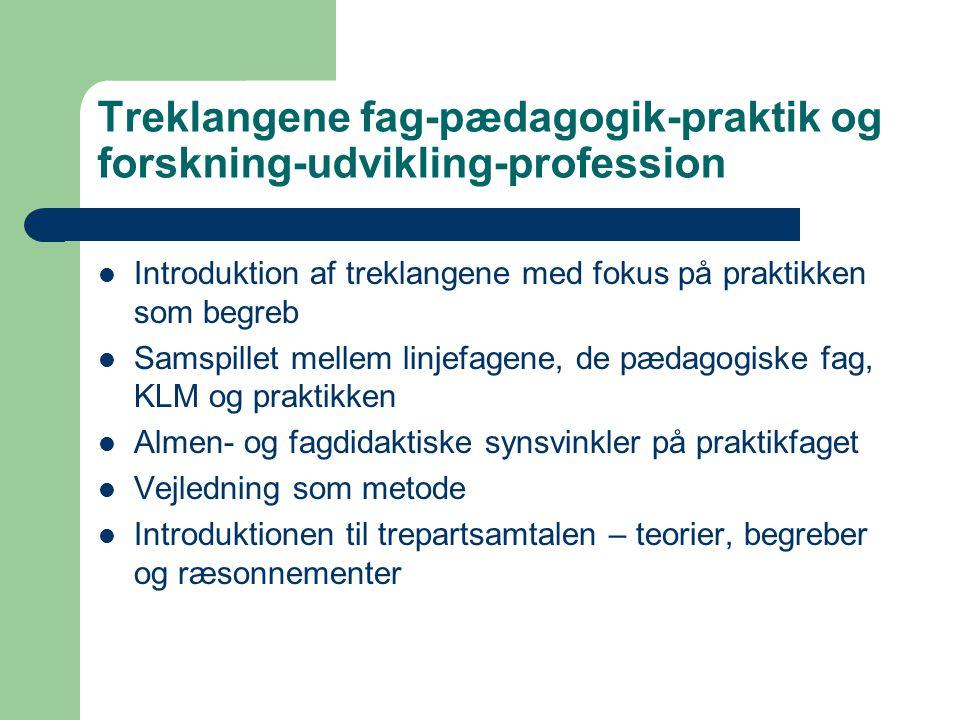 Treklangene fag-pædagogik-praktik og forskning-udvikling-profession Introduktion af treklangene med fokus på praktikken som begreb Samspillet mellem linjefagene, de pædagogiske fag, KLM og praktikken Almen- og fagdidaktiske synsvinkler på praktikfaget Vejledning som metode Introduktionen til trepartsamtalen – teorier, begreber og ræsonnementer