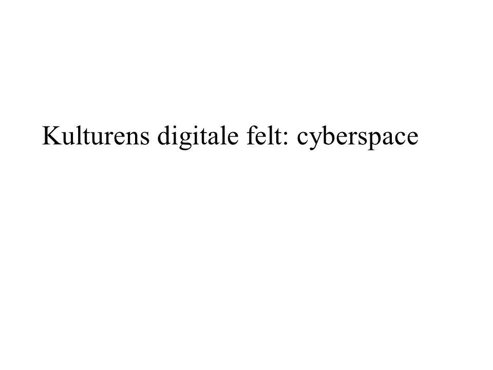 Kulturens digitale felt: cyberspace