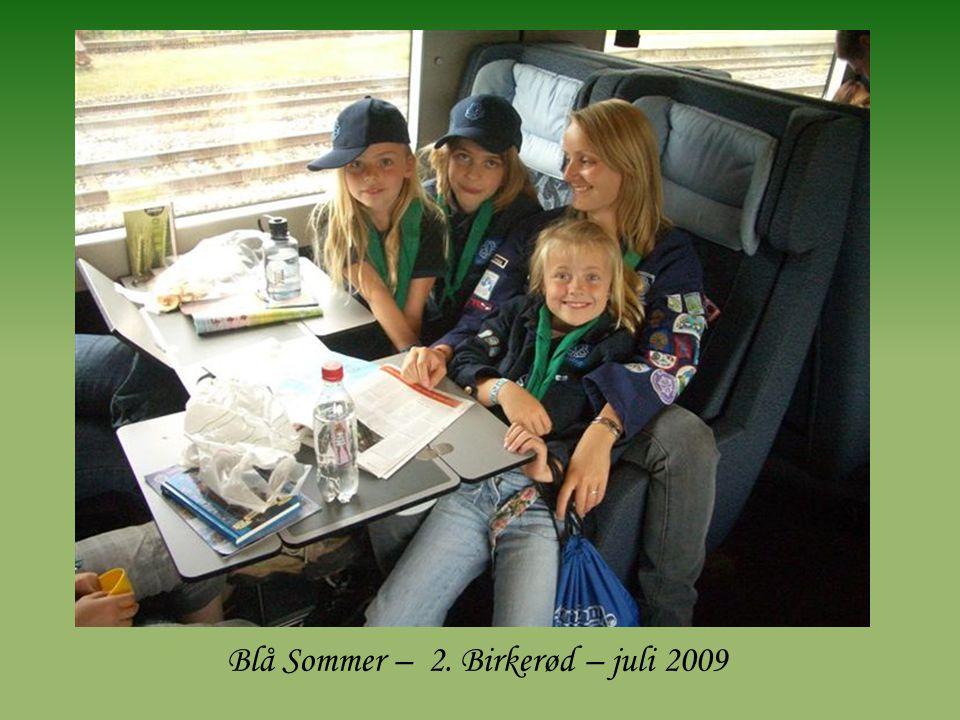 Blå Sommer – 2. Birkerød – juli 2009
