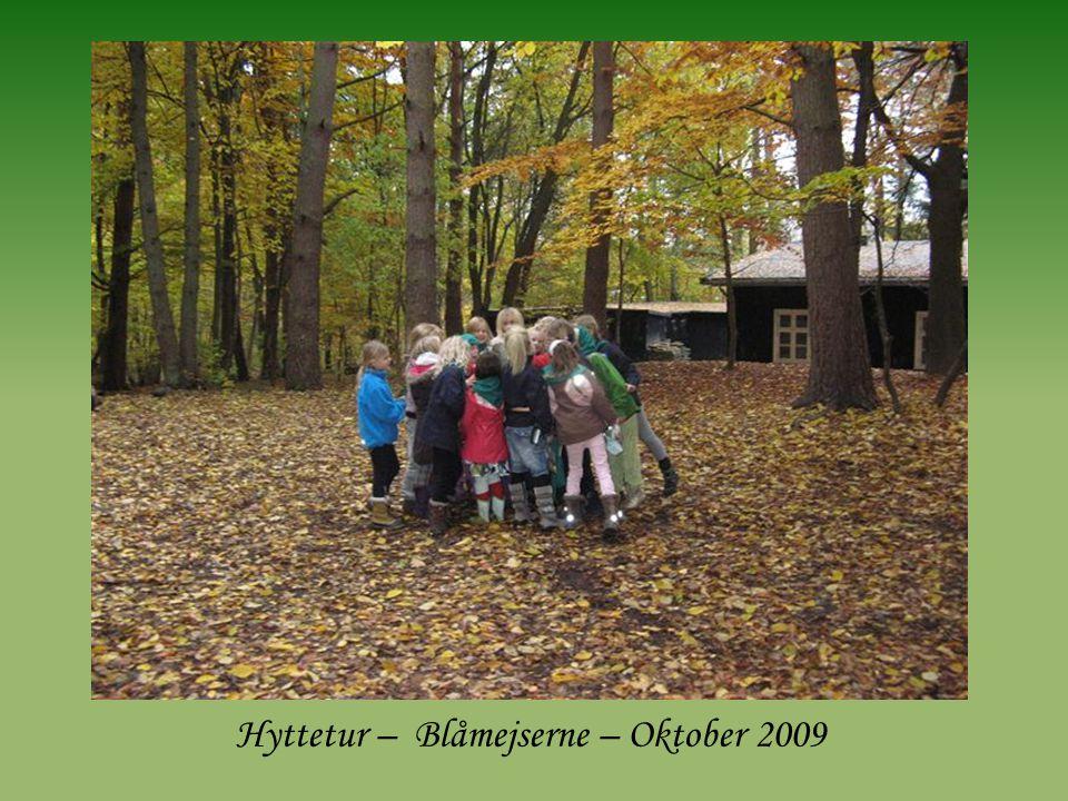 Hyttetur – Blåmejserne – Oktober 2009