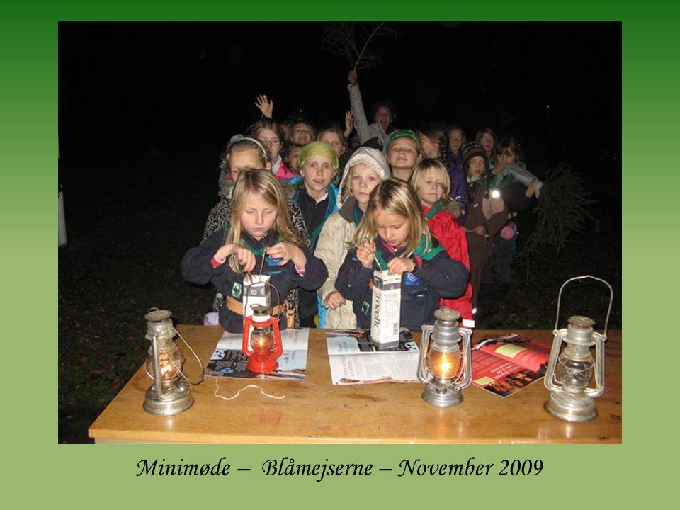 Minimøde – Blåmejserne – November 2009