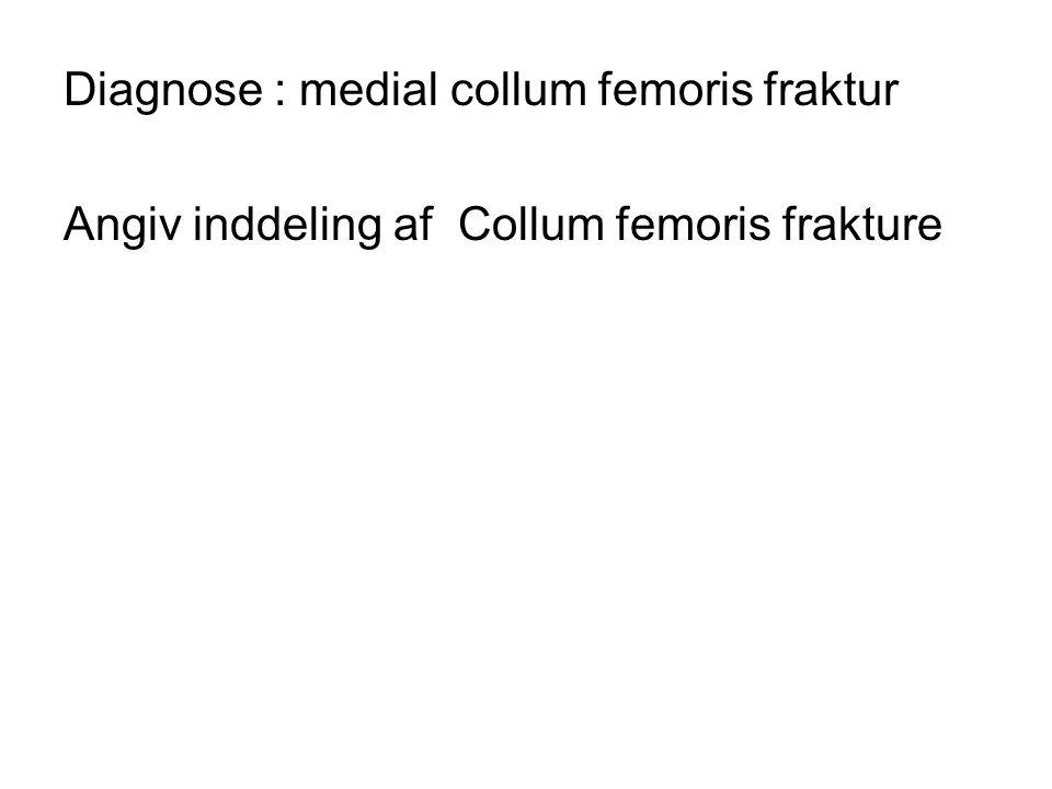 Diagnose : medial collum femoris fraktur Angiv inddeling af Collum femoris frakture