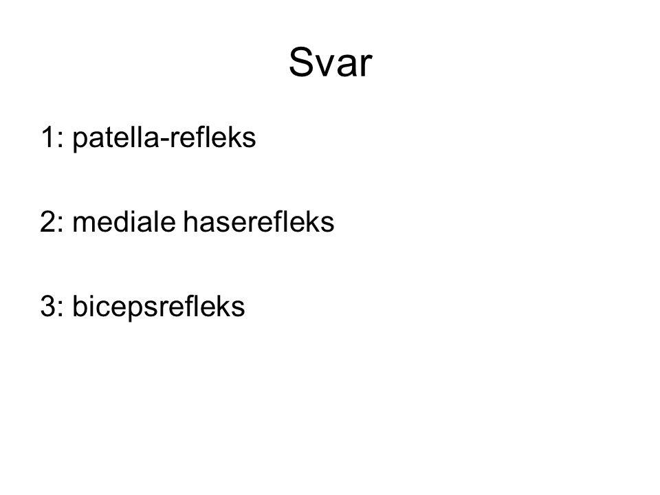 Svar 1: patella-refleks 2: mediale haserefleks 3: bicepsrefleks