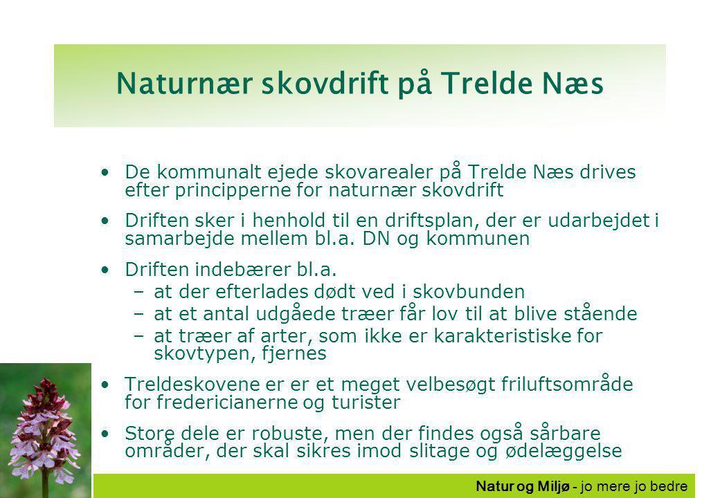 Natur og Miljø - jo mere jo bedre Naturnær skovdrift på Trelde Næs De kommunalt ejede skovarealer på Trelde Næs drives efter principperne for naturnær skovdrift Driften sker i henhold til en driftsplan, der er udarbejdet i samarbejde mellem bl.a.