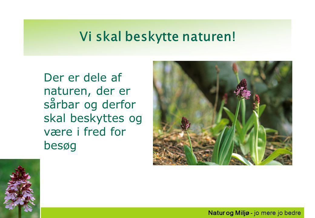 Natur og Miljø - jo mere jo bedre Vi skal beskytte naturen.