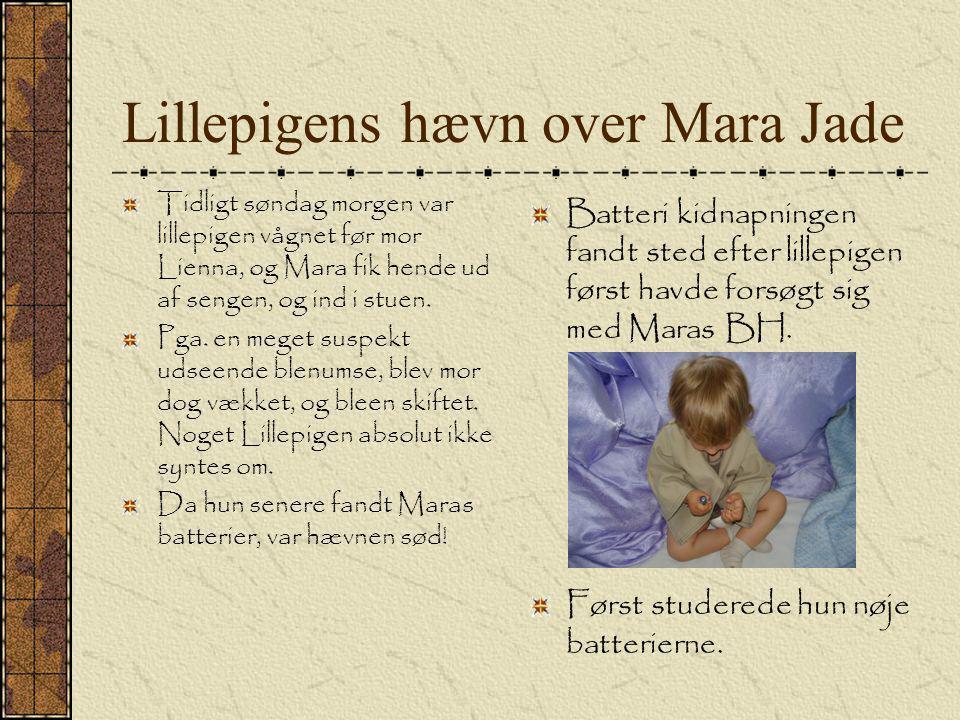 Lillepigens hævn over Mara Jade Tidligt søndag morgen var lillepigen vågnet før mor Lienna, og Mara fik hende ud af sengen, og ind i stuen.