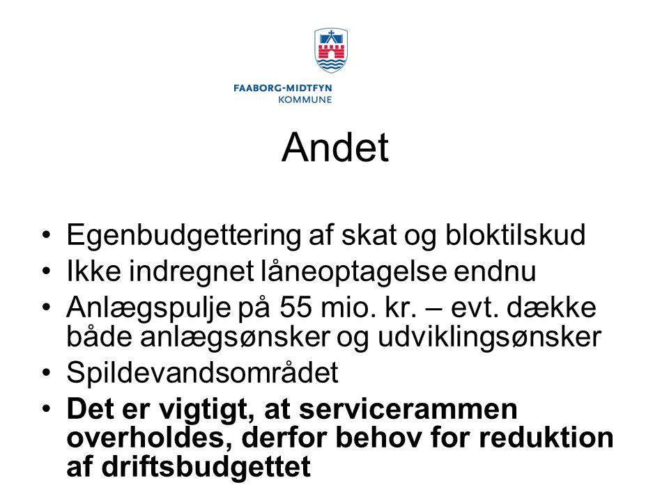 Andet Egenbudgettering af skat og bloktilskud Ikke indregnet låneoptagelse endnu Anlægspulje på 55 mio.