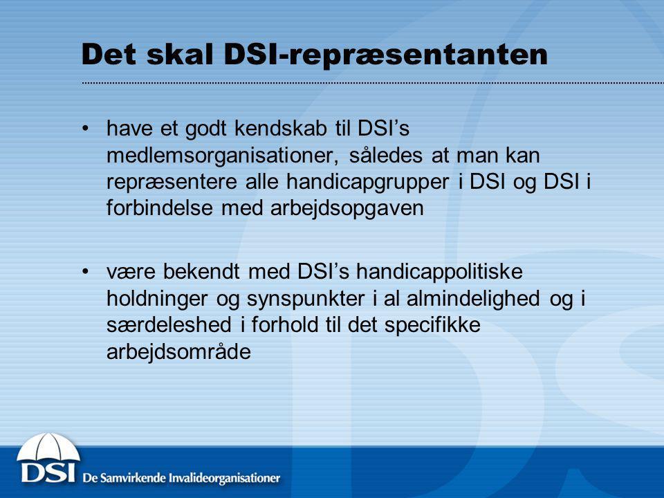Det skal DSI-repræsentanten have et godt kendskab til DSI's medlemsorganisationer, således at man kan repræsentere alle handicapgrupper i DSI og DSI i forbindelse med arbejdsopgaven være bekendt med DSI's handicappolitiske holdninger og synspunkter i al almindelighed og i særdeleshed i forhold til det specifikke arbejdsområde