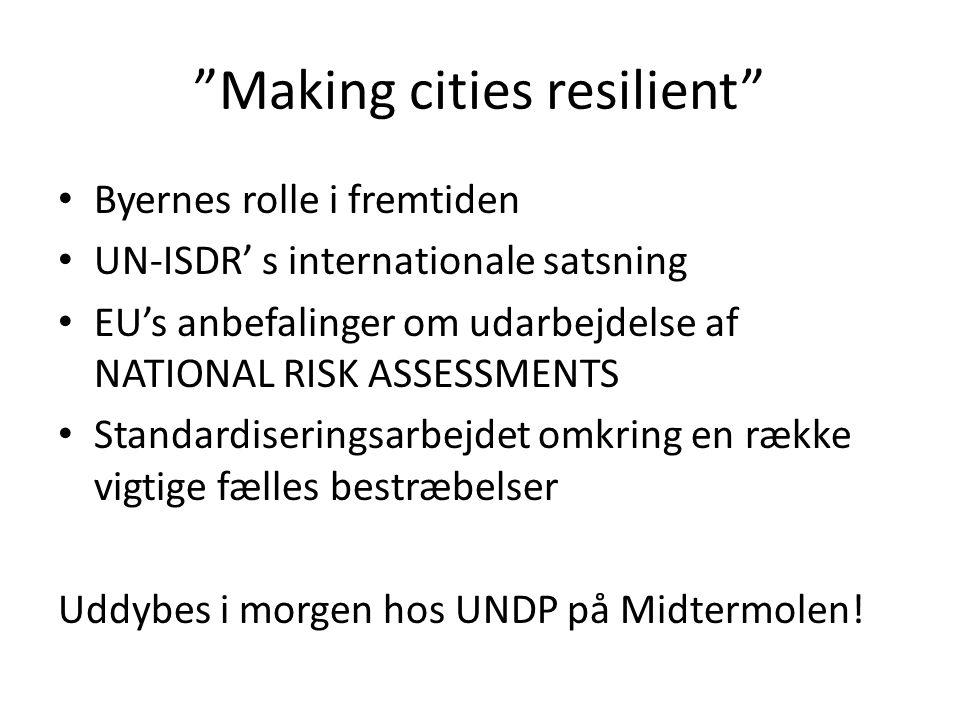 Making cities resilient Byernes rolle i fremtiden UN-ISDR' s internationale satsning EU's anbefalinger om udarbejdelse af NATIONAL RISK ASSESSMENTS Standardiseringsarbejdet omkring en række vigtige fælles bestræbelser Uddybes i morgen hos UNDP på Midtermolen!