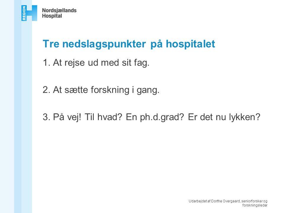 Udarbejdet af Dorthe Overgaard, seniorforsker og forskningsleder Tre nedslagspunkter på hospitalet 1.