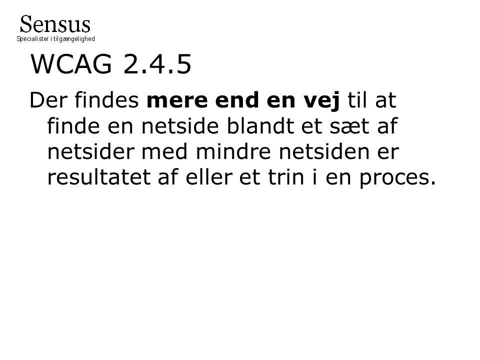 WCAG 2.4.5 Der findes mere end en vej til at finde en netside blandt et sæt af netsider med mindre netsiden er resultatet af eller et trin i en proces.
