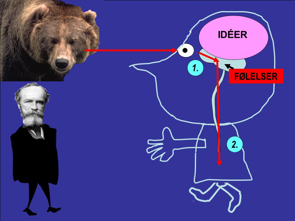 IDÉER FØLELSER Common sense says, we loose our fortune, are sorry and weep; we meet a bear, are frightened and run; we are insulted by a rival are angry and strike.
