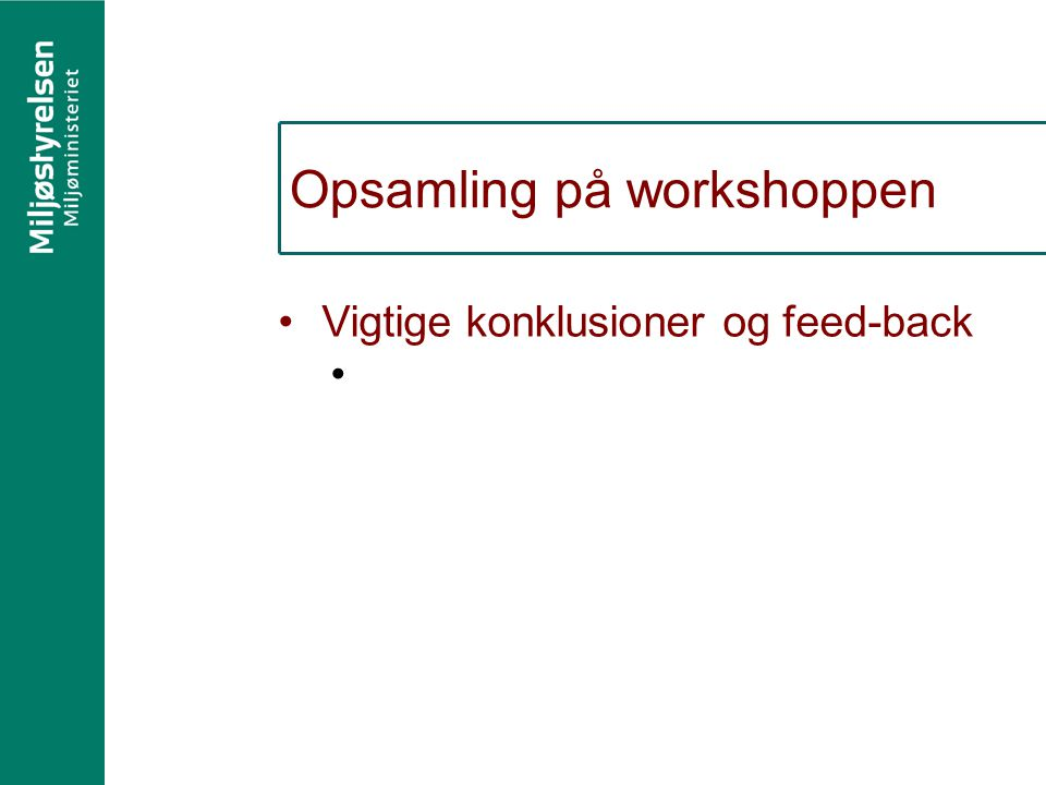 Opsamling på workshoppen Vigtige konklusioner og feed-back