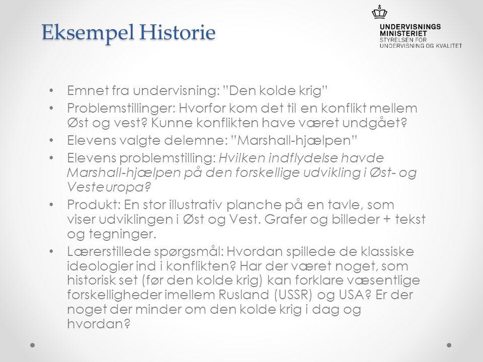 problemstilling historie mundtlig eksamen